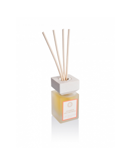 Diffuser Tangerine and Cinnamon